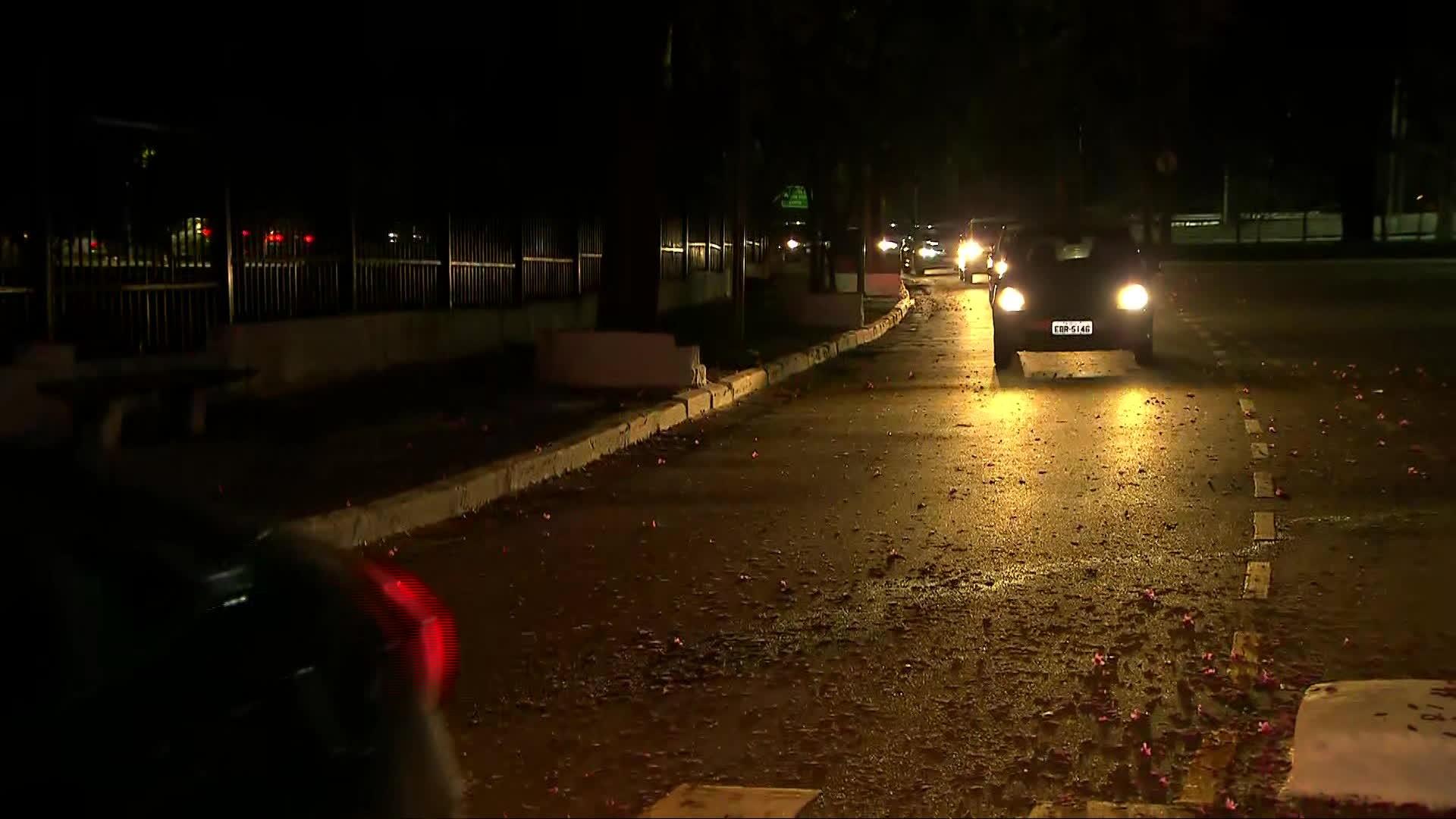 No primeiro dia de reabertura, Parque Ibirapuera tem filas de carros e movimento forte