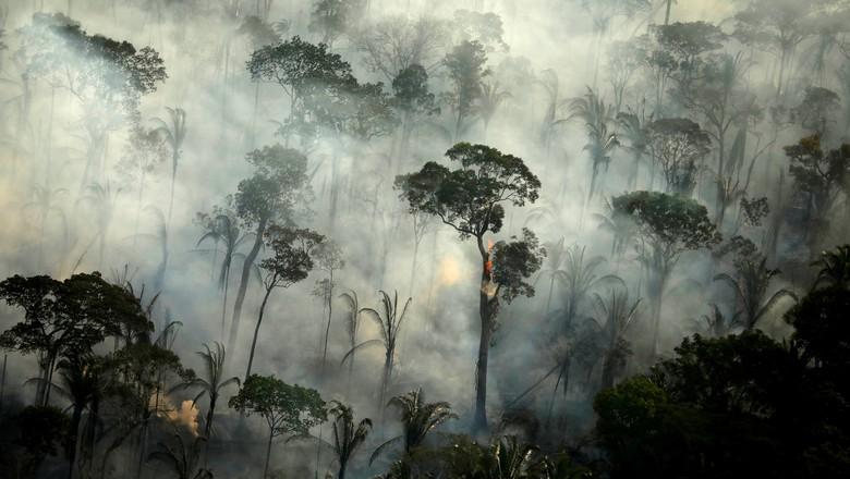 Fumaça de incêndio na Floresta Amazônica perto de Porto Velho 10/9/2019 (Foto: REUTERS/Bruno Kelly)