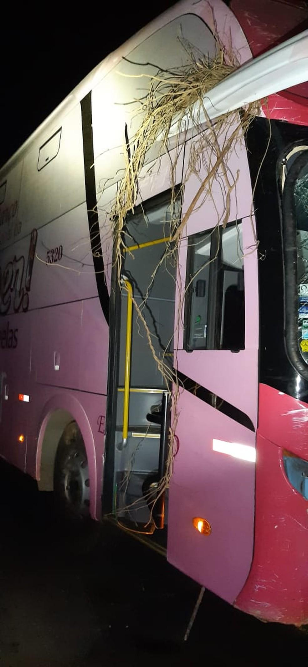 Motorista teve escoriações e nenhum passageiro ficou ferido — Foto: Corpo de Bombeiros/Divulgação