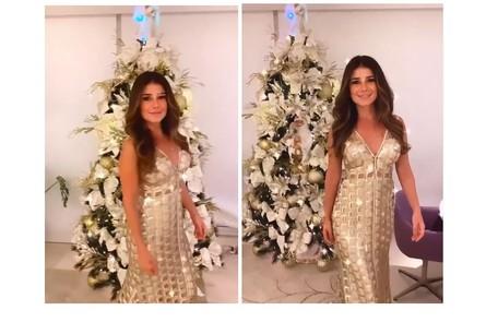 A cantora Paula Fernandes, que mora em Minas Gerais, mostrou sua árvore com adornos brancos e prateados Reprodução