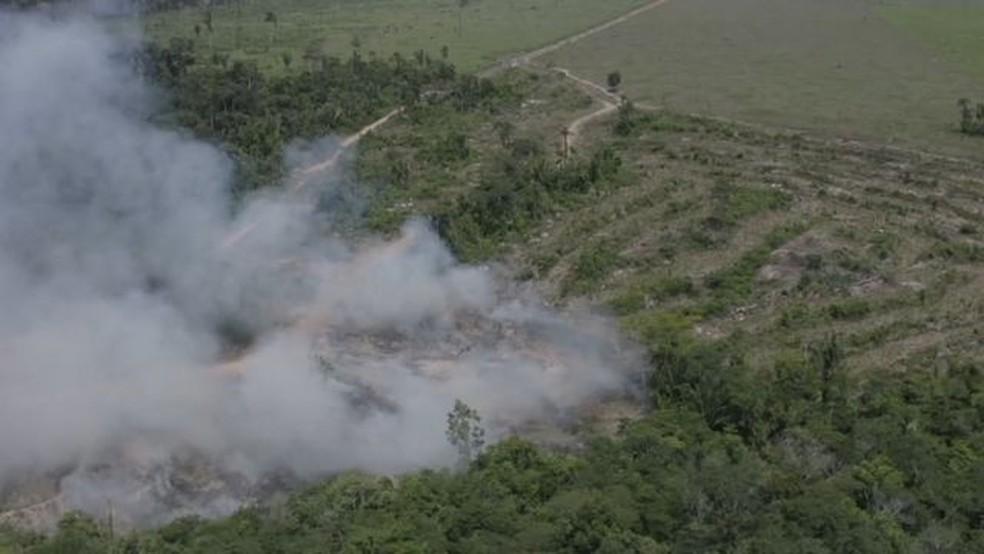Queimada em Rondônia; ao desmatar um terreno, grileiros creem ter mais chance de poder regularizar a ocupação. — Foto: BBC
