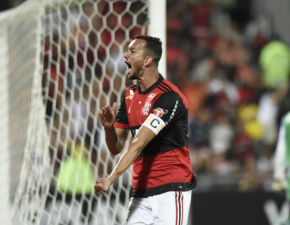 Flamengo x Bahia Ilha do Urubu Brasileirão Réver (Foto: André Durão)