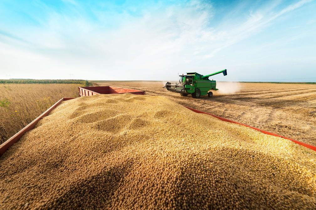 Resultado da lavoura de soja é fundamental para o desempenho do PIB agropecuário — Foto: Ouro Safra/Divulgação