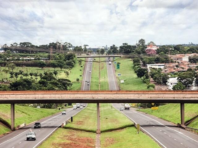 Triângulo do Sol obtém liminar que impede bloqueio de caminhoneiros em três rodovias do interior de SP