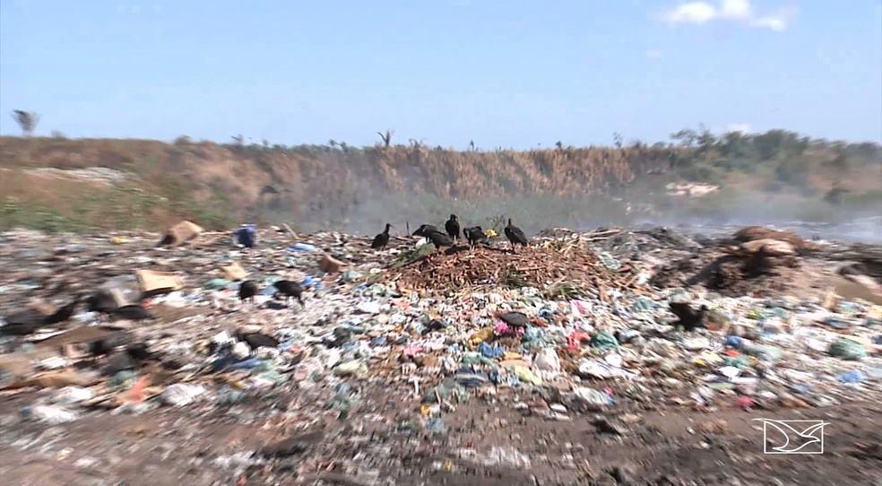Atualmente 54 famílias sobrevivem do que conseguem catar diariamente no lixão em Codó (Foto: Reprodução/TV Mirante)