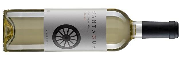 O Sauvignon Blanc Cantagua