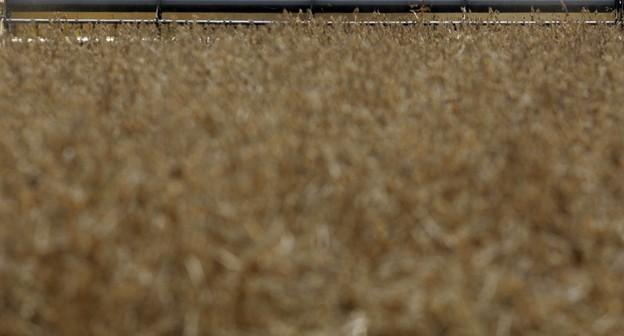 Colheita de soja no PR atinge 23%, ainda atrasada; plantio de milho safrinha vai a 28%