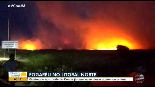 Incêndio atinge vegetação de cidade da BA há mais de uma semana; prefeitura alerta população