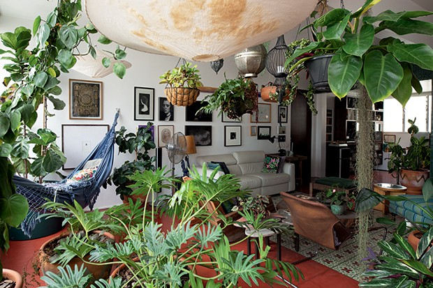 Lifestyle decor - Sala de estar dominada por verde (Foto: Carol Gherardi)
