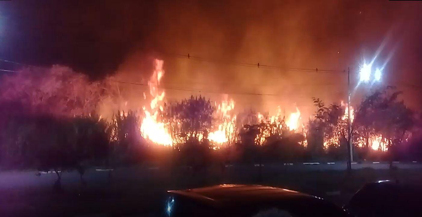 Incêndio perto de área residencial assusta moradores do Jambeiro e Parque Prado, em Campinas - Notícias - Plantão Diário