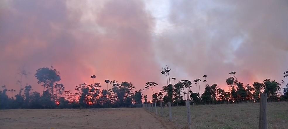 Operação Abafa Amazônia — Foto: TV Centro América