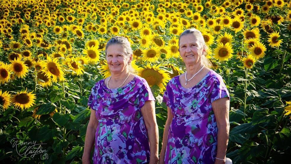 Irmãs gêmeas participam de ensaio fotográfico na plantação de girassóis em Cerquilho — Foto: Ronny Clayton Fotografia/Divulgação