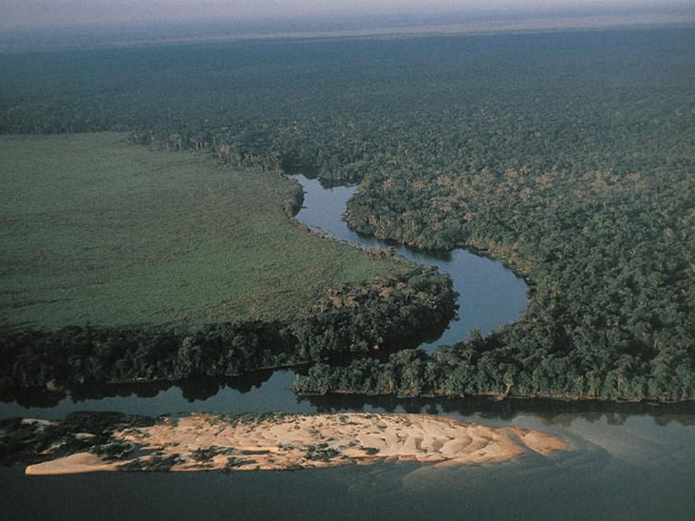 Vista aérea da floresta Amazônia na região dos arredores do rio Guaporé — Foto: André Edouard/Arquivo/AFP