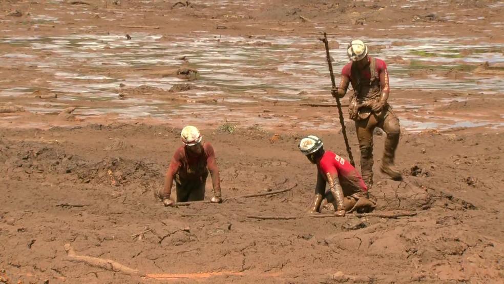 Bombeiros usam cajados para perfumar a lama em busca de corpos ou sobreviventes — Foto: Reprodução/GloboNews
