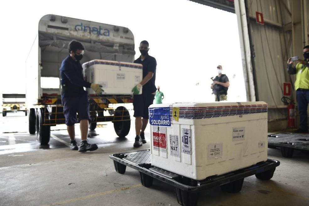 Mais de 16 mil vacinas CoronaVac chegam ao RN nesta sexta-feira (14) — Foto: Elisa Elsie/Governo do RN/Divulgação