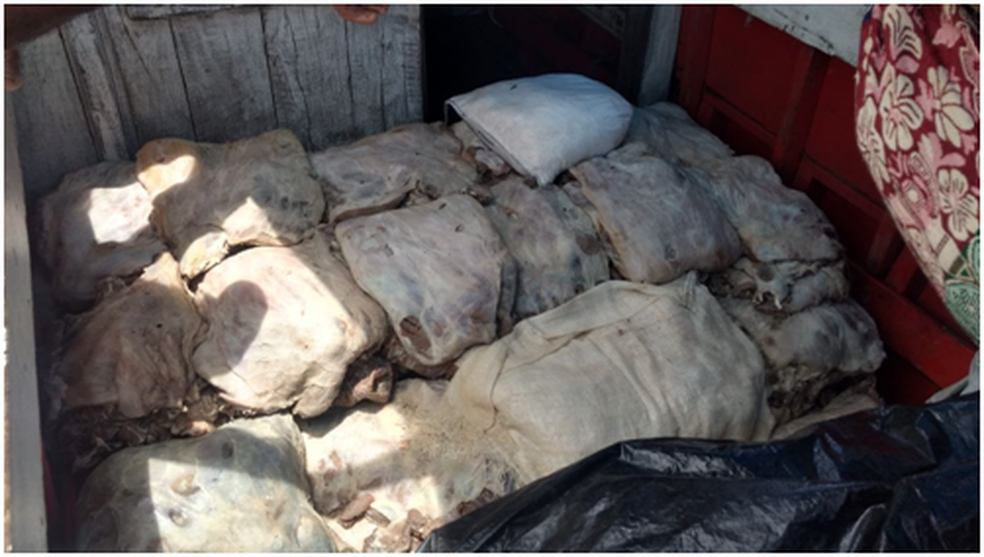 A carne de capivara é considerada carga ilegal e foi apreendida. (Foto: Reprodução / Marinha do Brasil)