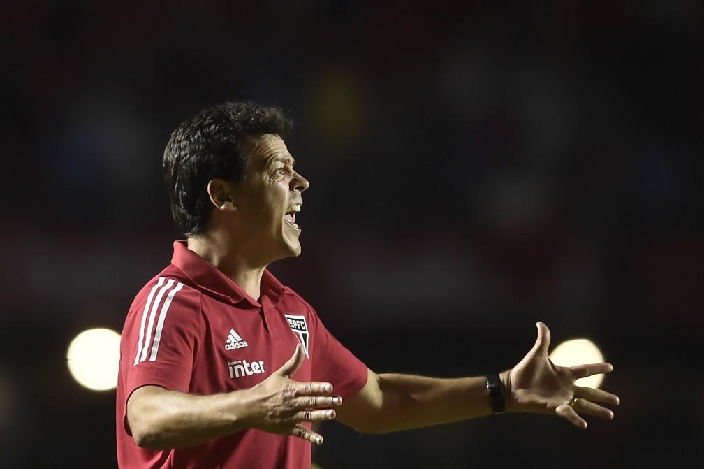 Fernando Diniz é elogiado por melhorar os jogadores do São Paulo — Foto: MAURO HORITA/ESTADÃO CONTEÚDO