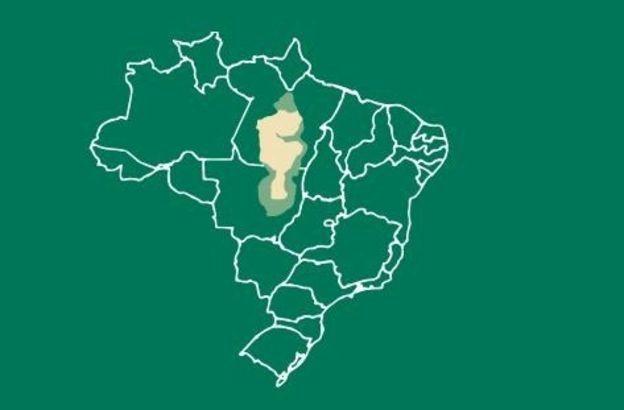 Bacia do Xingu, no Pará e Mato Grosso (trecho em amarelo corresponde às áreas protegidas) (Foto: XNGU+ via bbc)