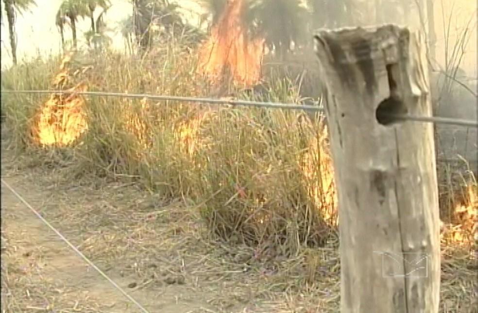 Queimadas cresceram no Maranhão no mês de agosto (Foto: Reprodução/TV Mirante)