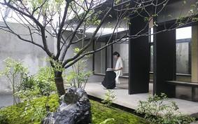 61 atitudes sustentáveis para transformar a casa