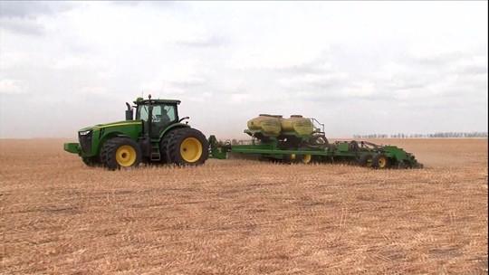 Produção de soja na BA deve chegar a 5,4 milhões de toneladas de grãos