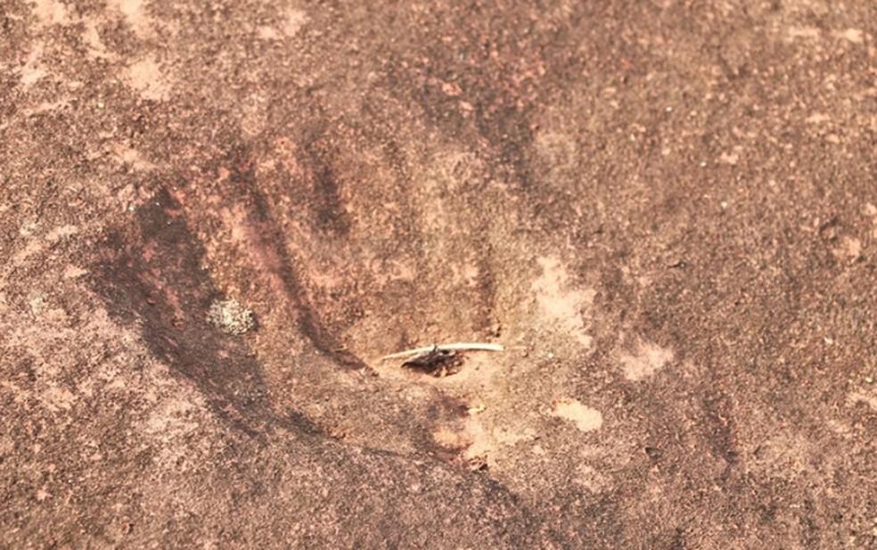 Pegadas podem ser de animal que viveu há 80 milhões de anos — Foto: Prefeitura de Poxoréo/ Assessoria