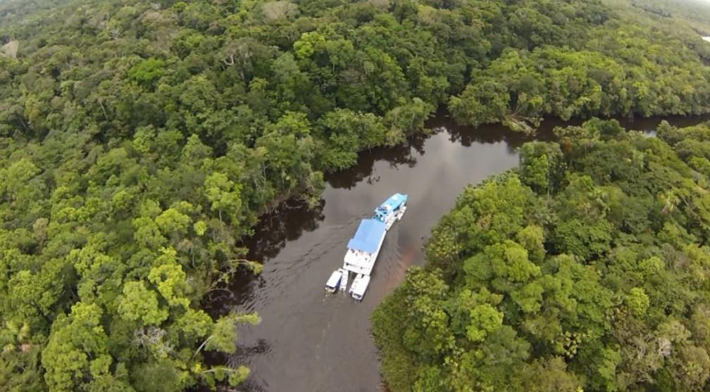 O aumento do desmatamento no território da Amazônia foi de 22% este ano segundo o último Boletim do Desmatamento  (Foto: Reprodução/EPTV)