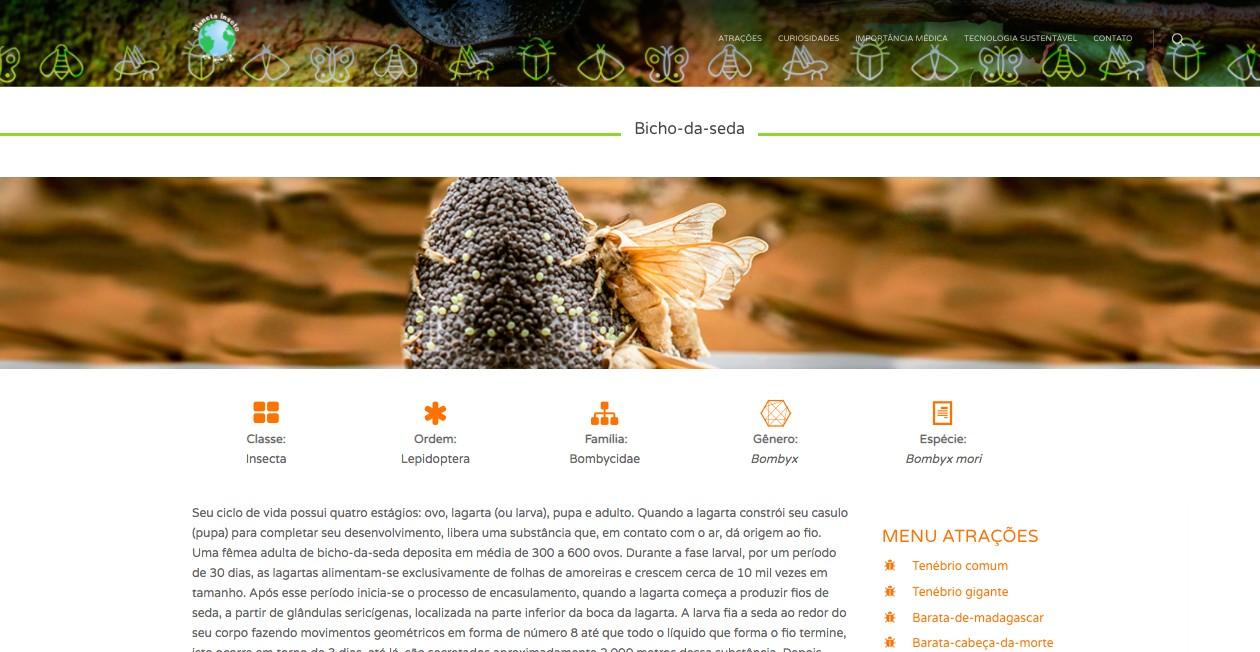 Saber mais sobre as abelhas, os besouros e o bicho-da-seda também é possível no site do museu (Foto: Reprodução)