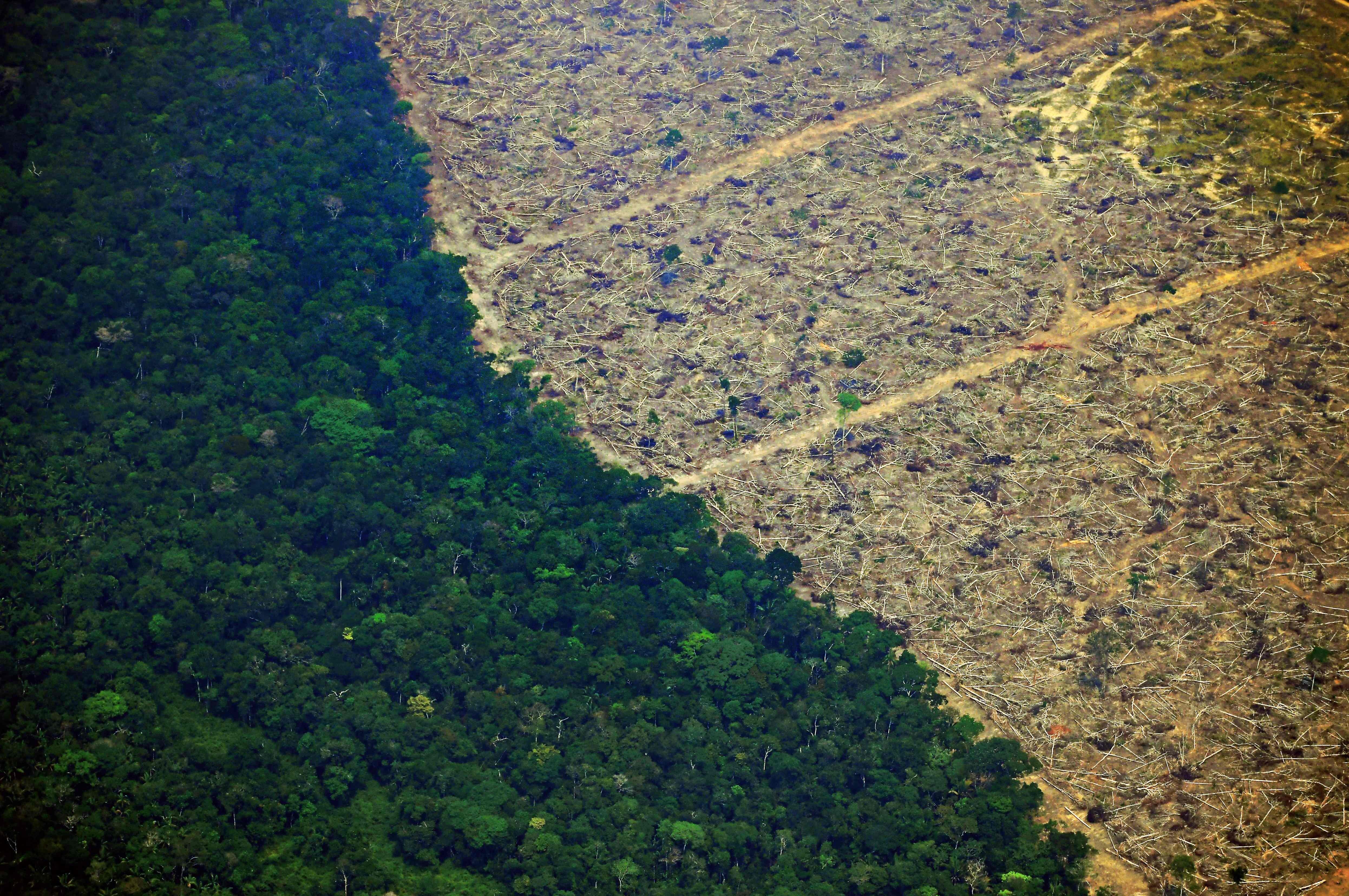 Foto da Amazônia em 23 de agosto de 2019