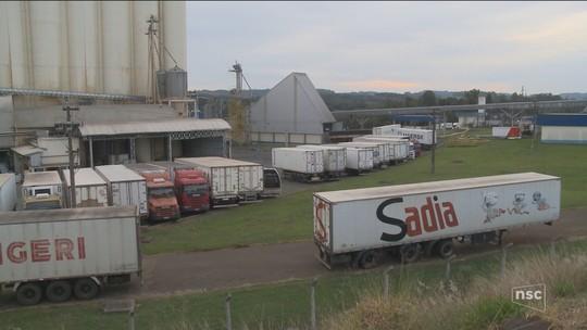 Avicultores de SC temem prejuízos altos com problemas para exportar frango para União Europeia