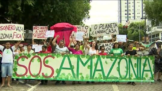 Cidades brasileiras têm atos em defesa da Amazônia