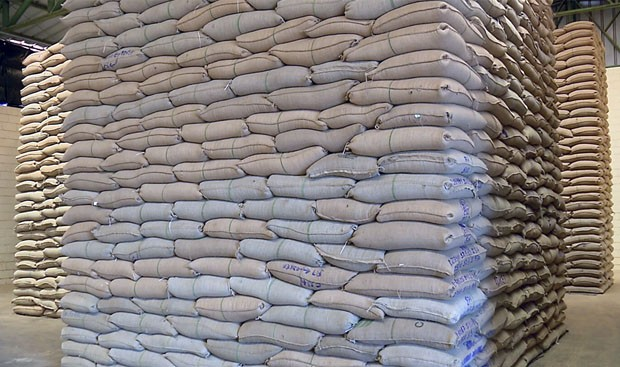 Estoques de café do Brasil atingem 12,9 milhões de sacas, maior volume desde 2016, diz Conab - Notícias - Plantão Diário