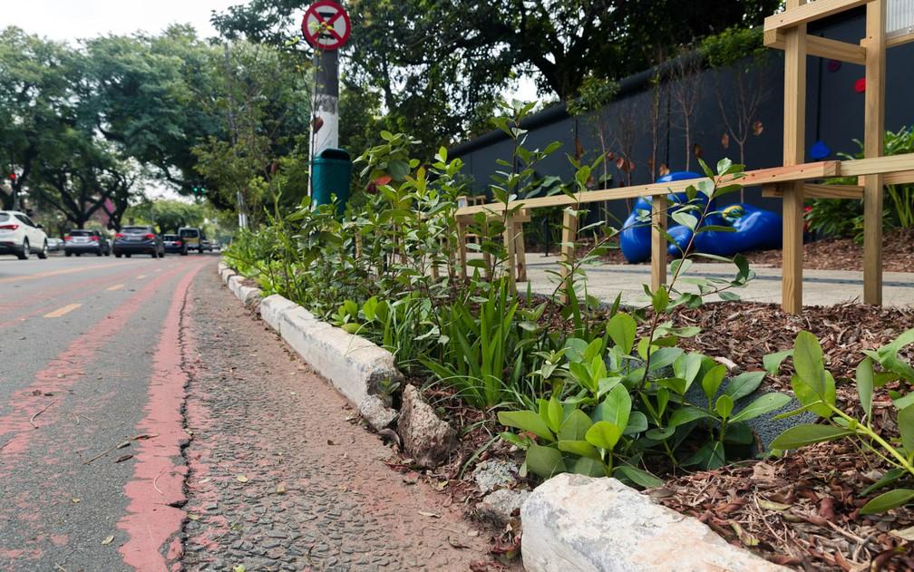 Jardim de chuva é ferramenta ainda inovadora no Brasil e capaz de acabar com enchentes, filtrar as águas dos rios, melhorar a qualidade do ar e ainda embelezar as cidades, segundo especialistas (Foto: Marcelo Brandt/G1)