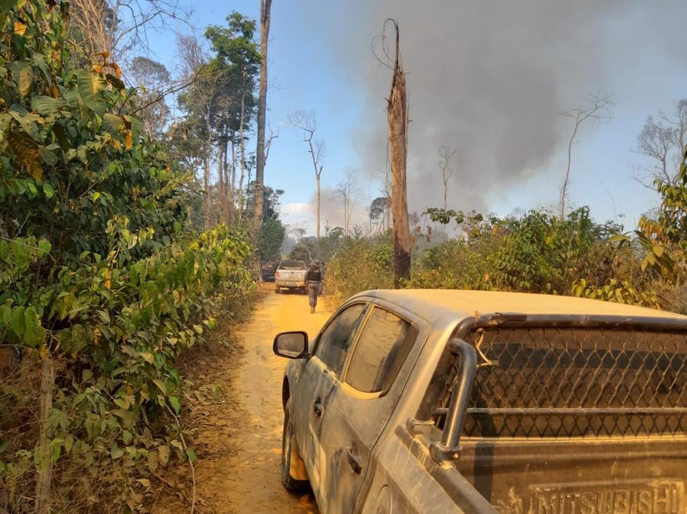 Grileiros e posseiros são suspeitos de desmatar Floresta Amazônia e fazer emboscadas contra fiscais em Mato Grosso — Foto: Sema/MT