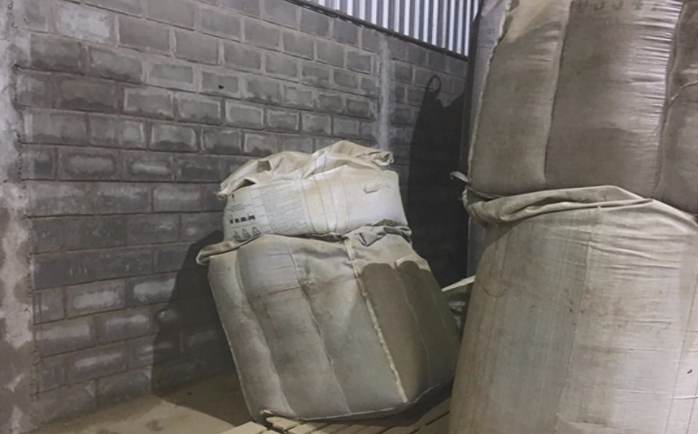 Segundo produtora, apenas 150 de suas 4 mil sacas ficaram no armazém — Foto: Reprodução/EPTV