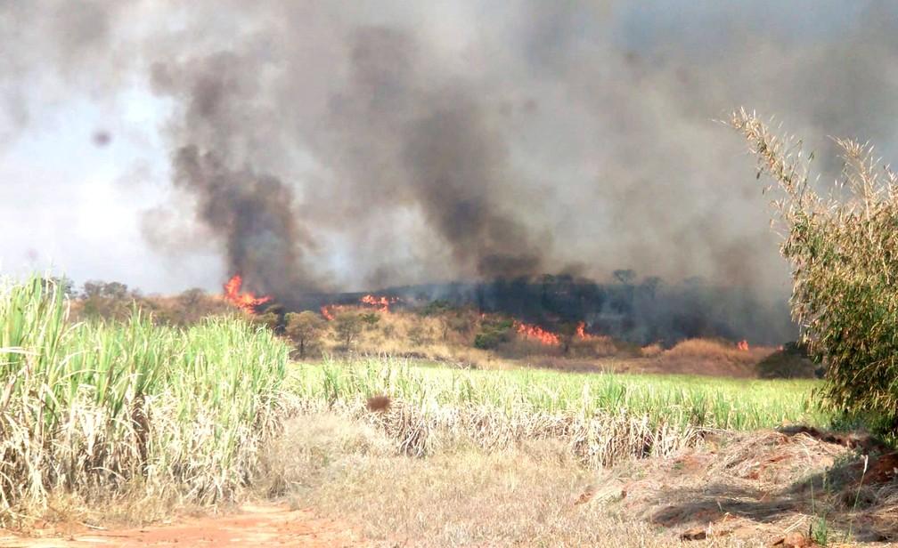 Na manhã desta segunda-feira (16), fogo voltou a ganhar força após se quase contido durante a madrugada — Foto: Defesa Civil de Bocaina/Divulgação