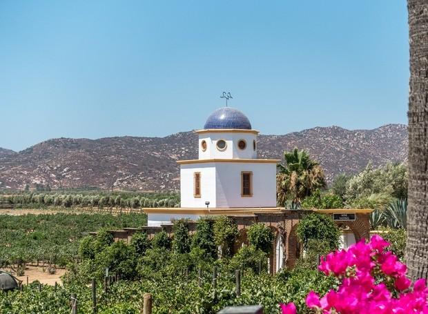 Valle Guadalupe, México (Foto: Travel Addicts/ Reprodução)