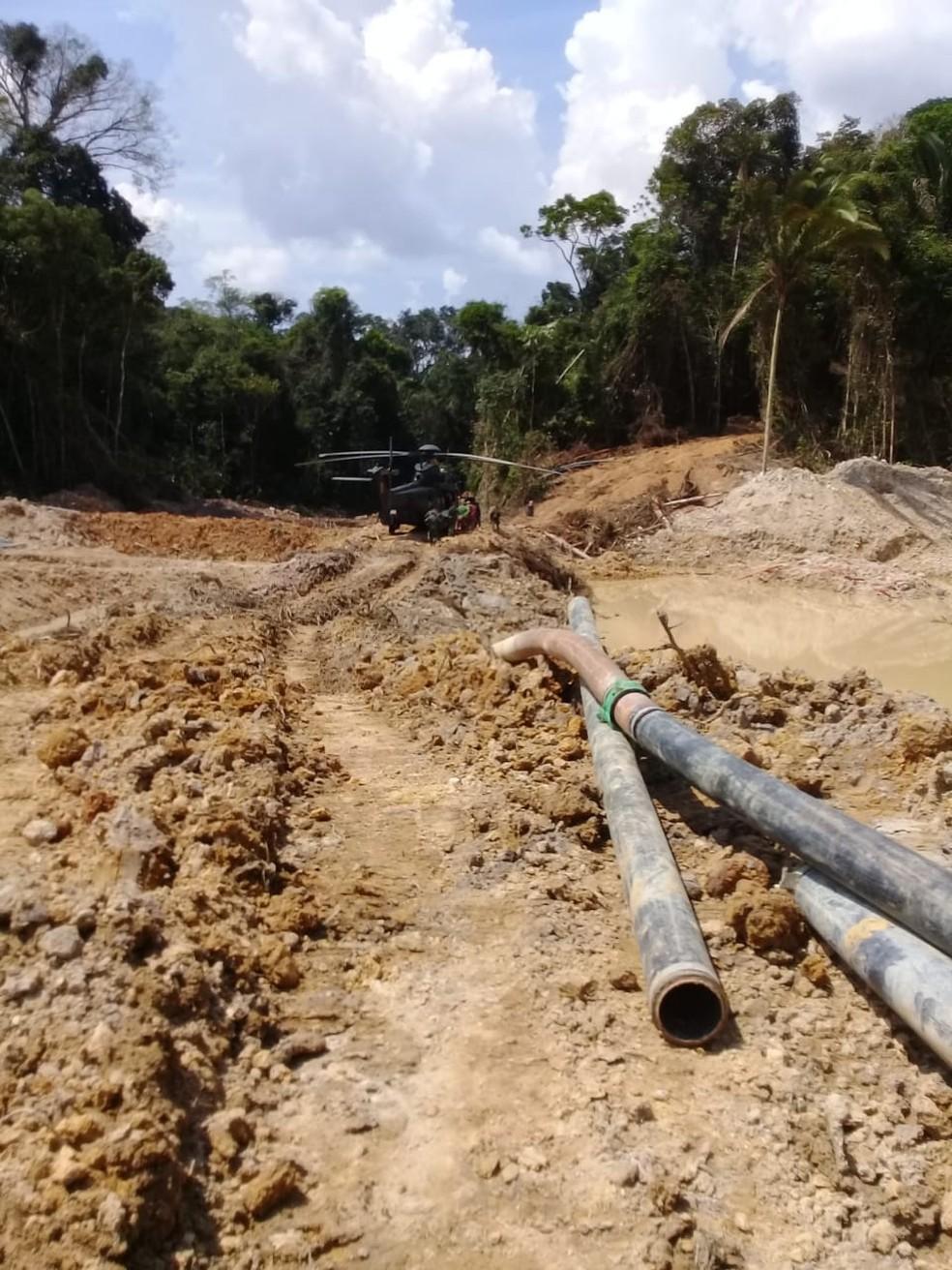 Operação cumpriu mandados em área de reserva — Foto: PF/Divulgação