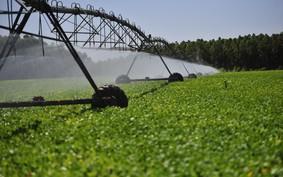 SC investirá R$ 1,5 mi em programa para incentivar armazenagem de água
