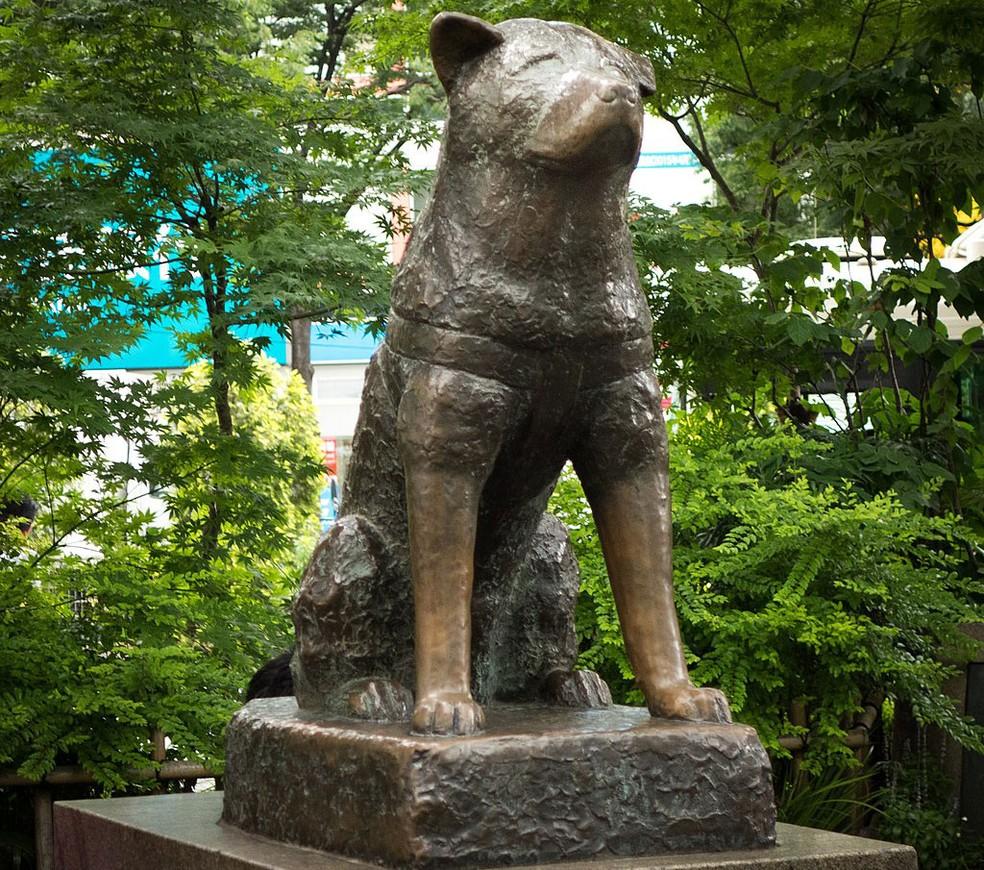 O cão Hachiko ficou famoso no Japão por ir ao encontro de seu dono todos os dias em uma estação — Foto: Daniel Ramirez/Creative Commons