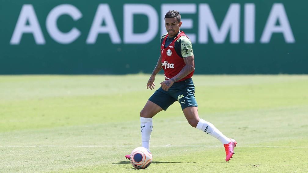 Dudu, durante treino na Academia de Futebol do Palmeiras — Foto: Cesar Greco/Ag. Palmeiras