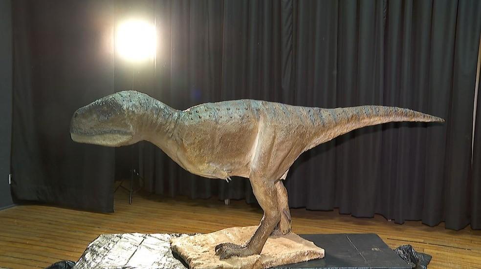Kurupi itaata pertence à família dos abelissaurídeos e é o primeiro carnívoro encontrado em Monte Alto, SP — Foto: Chico Escolano/EPTV