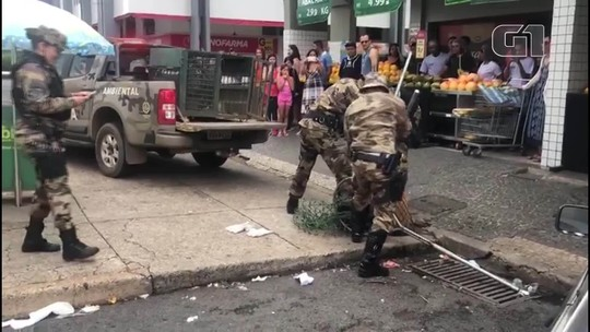 Capivara é resgatada em área comercial da Asa Norte, em Brasília; veja vídeo