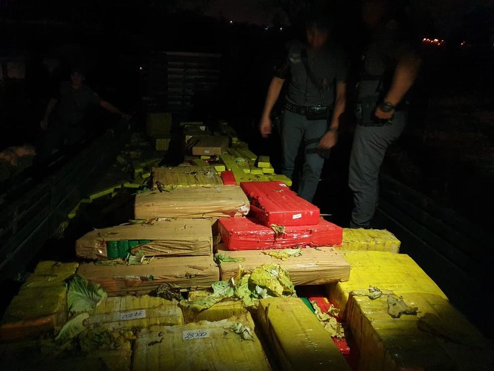 Mais de duas toneladas de maconha foram apreendidas pelo Baep — Foto: Polícia Civil