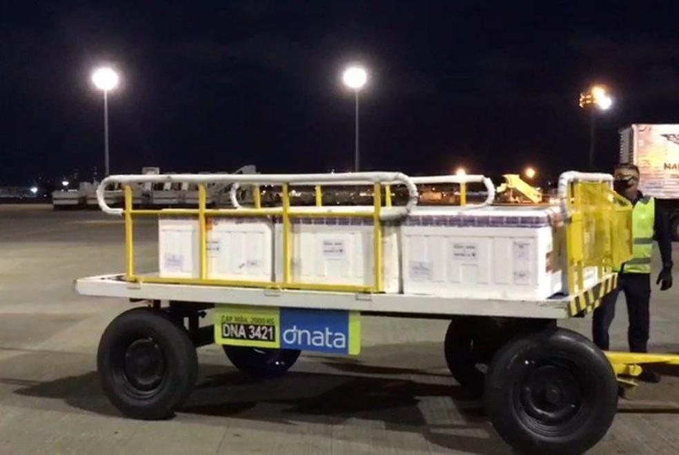 Nova remessa da AstraZeneca chegou ao Ceará no fim da tarde desta quinta-feira.  — Foto: Divulgação/Governo do Estado