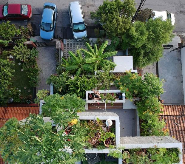 Casa na Malásia possui espaço para plantação de 40 espécies. Os arquitetos procuraram oferecer meios de subsistência aos moradores (Foto:  Ameen Deen/ Dezeen/ Reprodução)