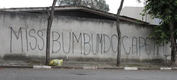 Muro da casa de Andressa Urach (Foto: Thiago Duran / AgNews)