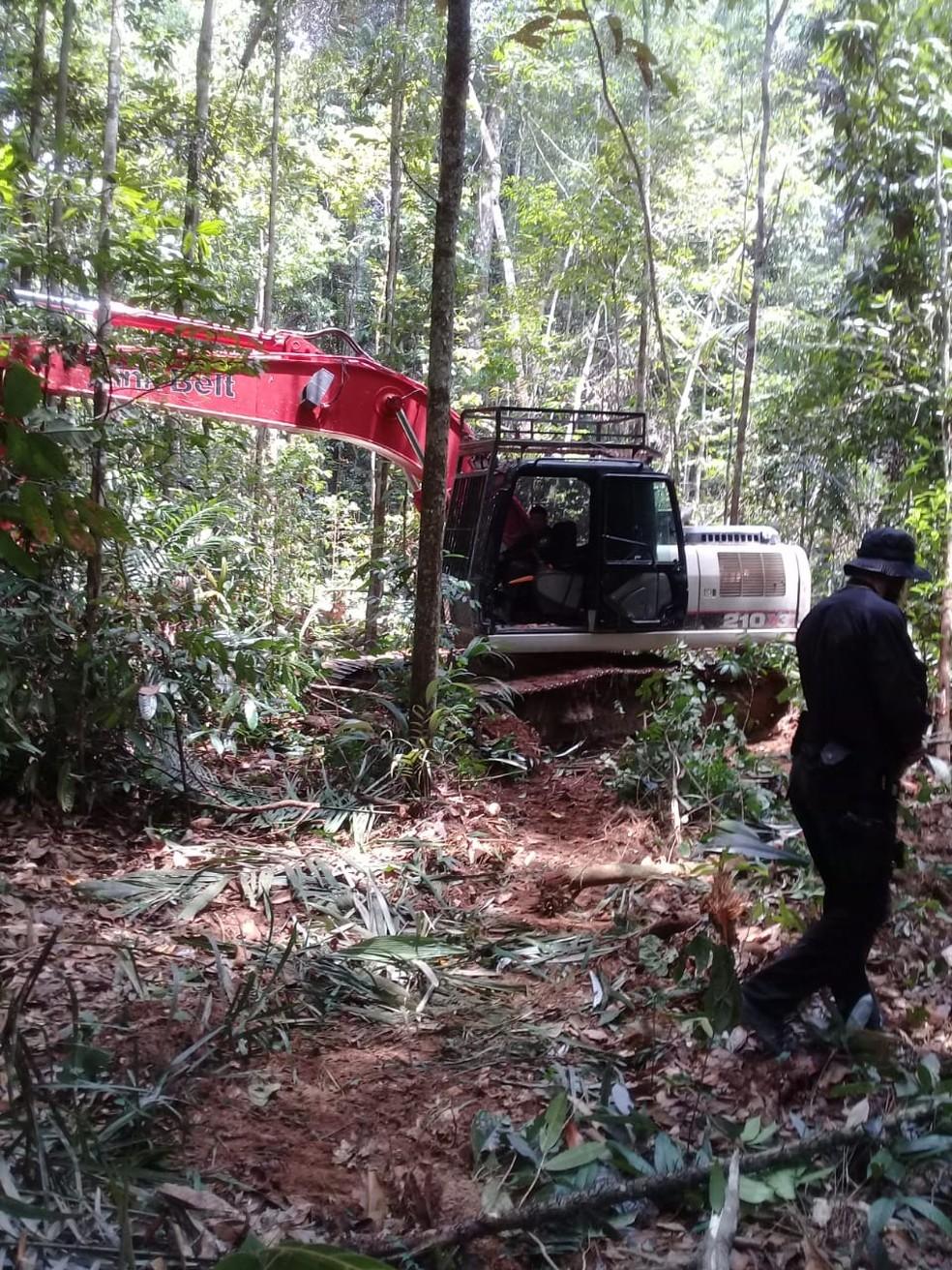 Agentes da PF encontram desmatamento em reserva  — Foto: PF/Divulgação