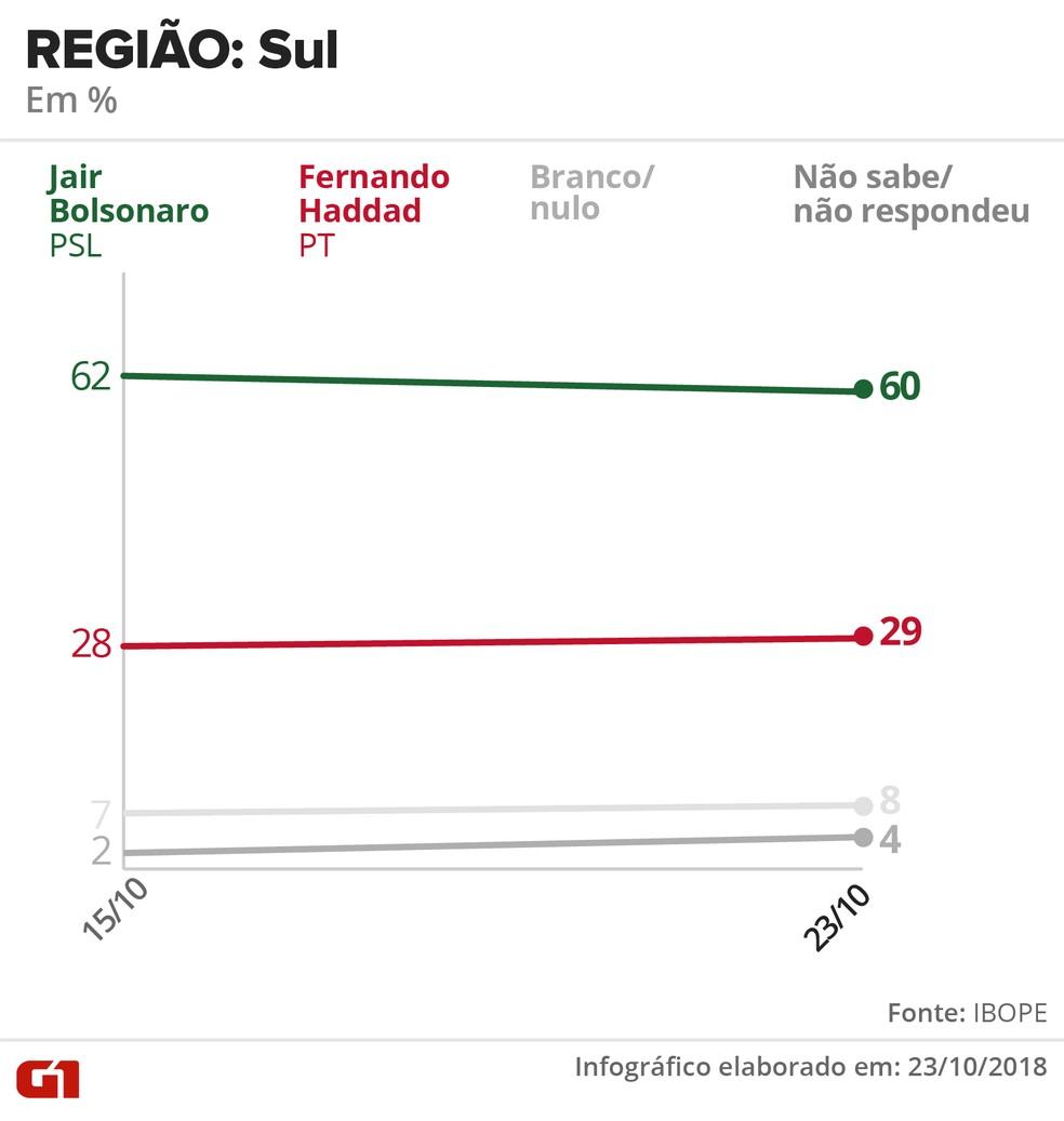 Pesquisa Ibope - 23 de outubro - intenção de voto por segmentos - região: Sul — Foto: Arte/G1