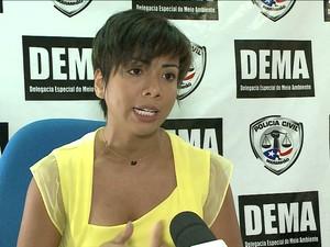 Delegada Bianca Almada da Delegacia de Meio Ambiente do Maranhão (Foto: Reprodução/TV Mirante)
